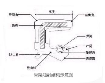 骨架油封结构示意图