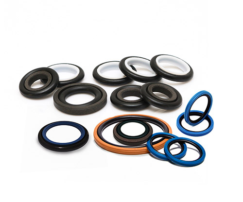 Glyd Ring/Step Seal